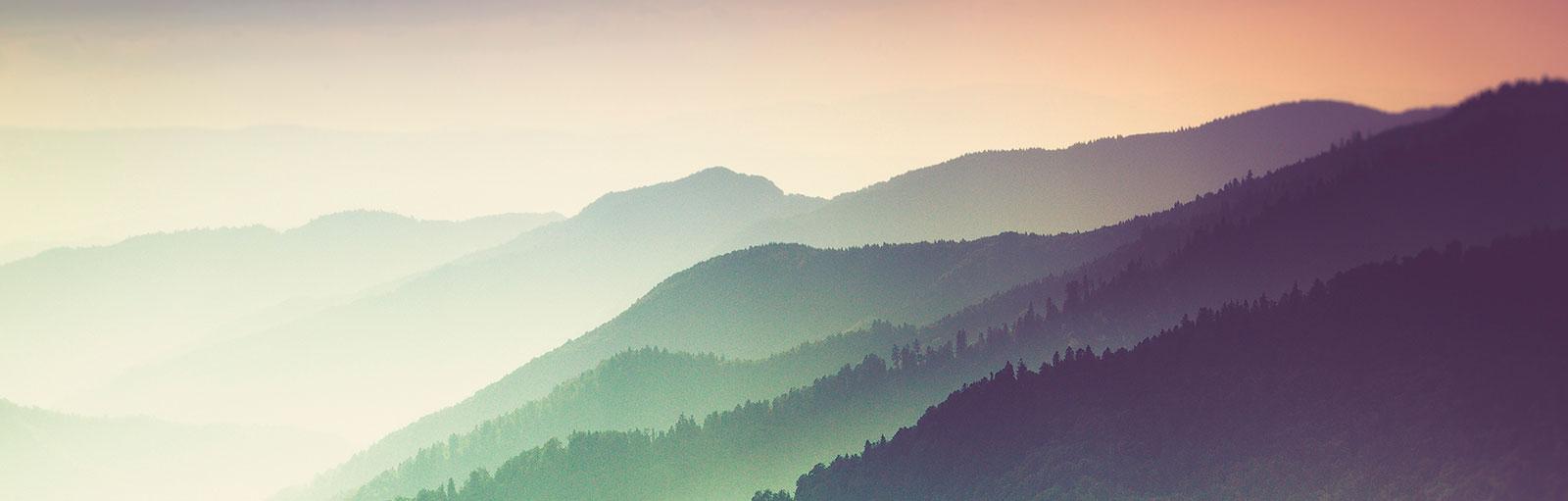 Schwarzwald, Stellenangebote